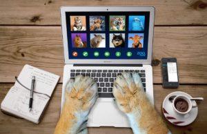 Journées d'étude 2021 – En ligne